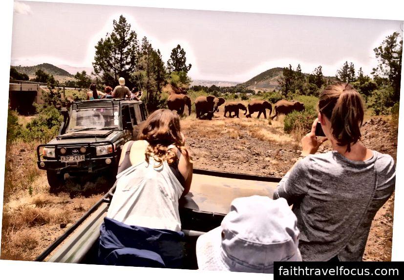 Ảnh tín dụng: Honeyguide Safaris